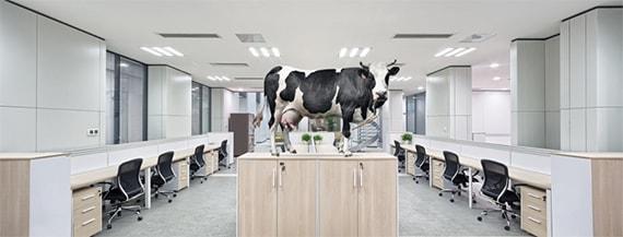 open kantoren